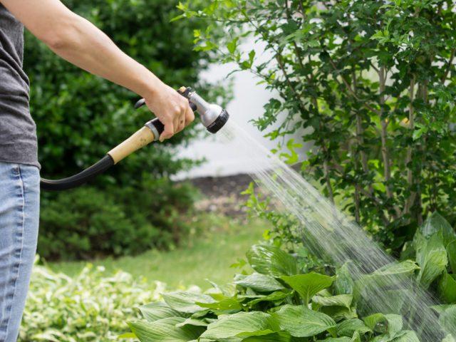 Entretenir son jardin, les indispensables.